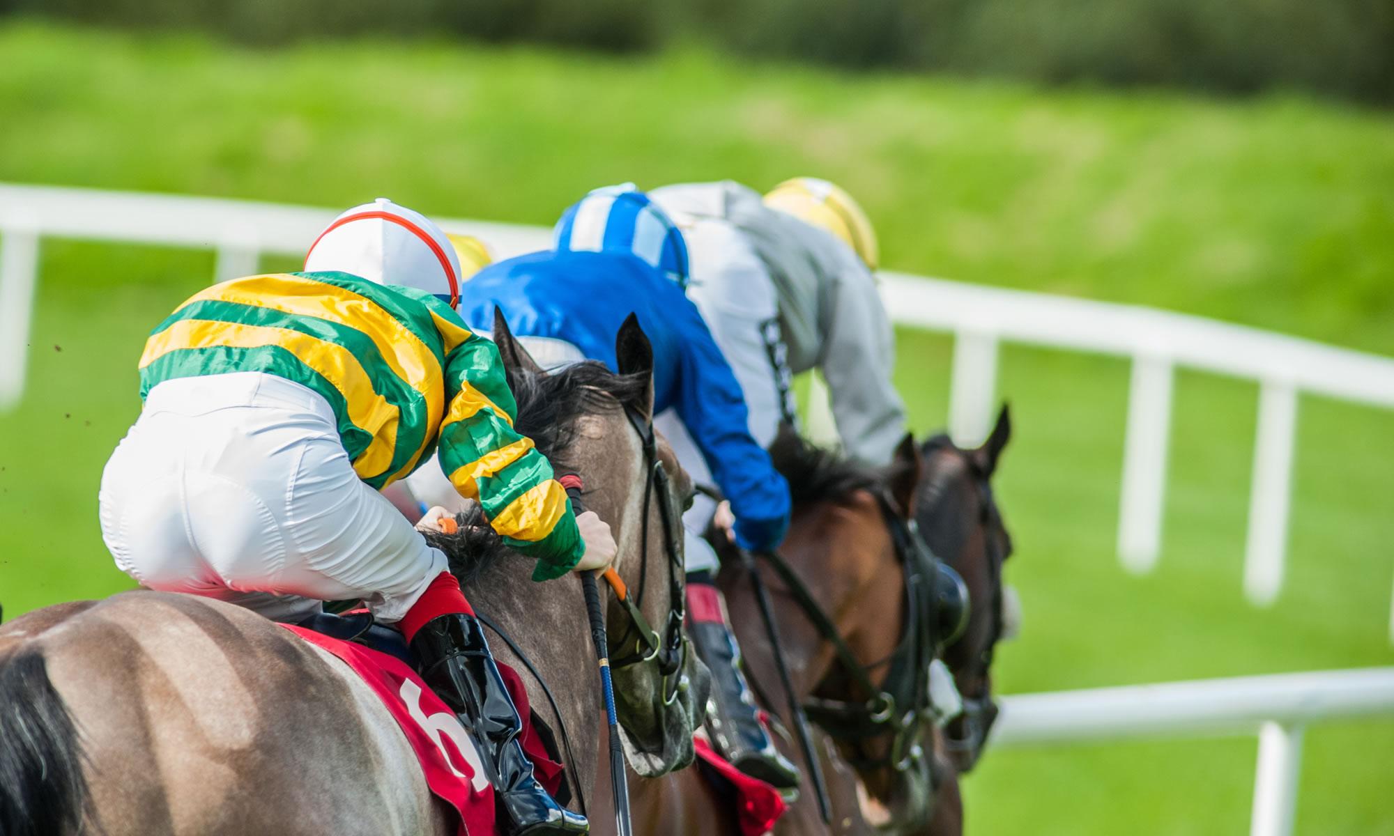 Racing Tips | Today's UK & Irish Horse Racing Tips & Naps